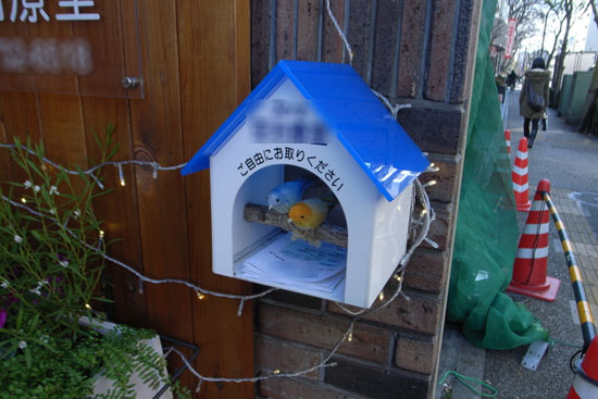 blog_bird_world_4